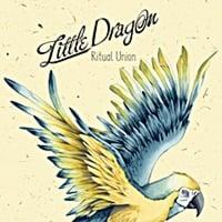 Little Dragon Ritual Union 2011 (Koschy Remix) Free Download by Koschy