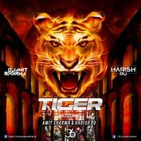Tiger - Amit Sharma & Harish R.u by 36djs