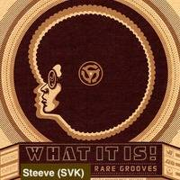 Steeve (SVK) pres. Rare Groove vol 3 by Steeve (SVK)
