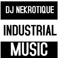 SKINNY PUPPY VS FRONT LINE ASSEMBLY (Post-Industrial Mix) by DJ Nekrotique by FrequenZ Mixshow