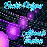 8 - Drudge by Electric Platypus