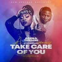 Adina ft. Stonebwoy - Take Care of You by JiveNaija