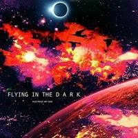 FLYING IN THE D A R K by AMA - Alex Music Art