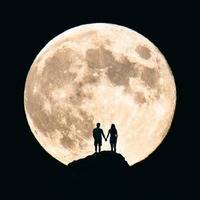 LET'S ALL GO TO THE MOON.......ROCK AND POP by ron anderson