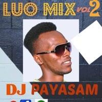 LUO MIX VOL 2 -DJ PAYASAM 256 by DJ PAYASAM 256