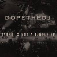 DopeTheDj - Bee Hive by DopeTheDj