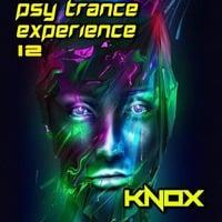 PSY TRANCE EXPERIENCE 12 mixed by KNOX by KNOX