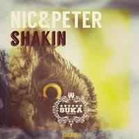 Shakin' (Kevin Prise Remix) - Out now by Nic&Peter