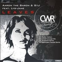 Aaron The Baron and STJ feat Lys Jane - Leaves (Soulplate Remix) by Soulplaterecords