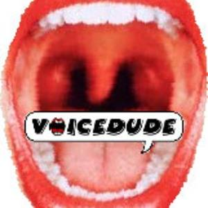 Voicedude