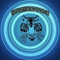 HouseTiger - In The Mix Vol.3 by TigerNationDE