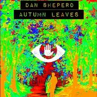 Dan Sheperd - Autumns leaves (Original) by DanSheperd
