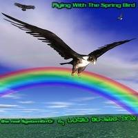 Flying With The Spring Bird by the real SystemErrOr
