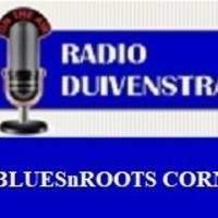 JAN VAN ECK - BLUESNROOTS CORNER 2020-20 by Jan van Eck