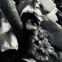 Ritual I: Psycore Drone Ritual (200-300 BPM) by Psyfons