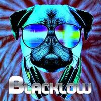 House Is A Feeling (Vol. 2) by DJ Blacklow